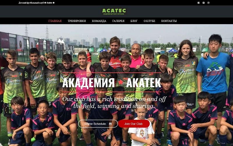создание сайта по футболу